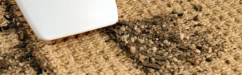 Image Result For Carpet Cleaning Portland Maine